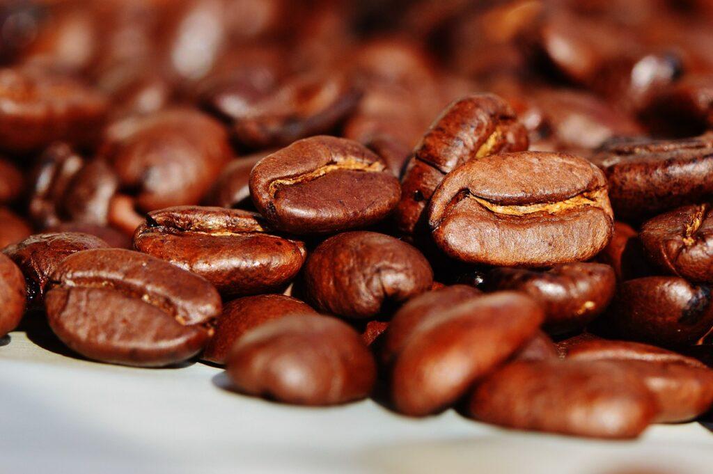 Safra de café