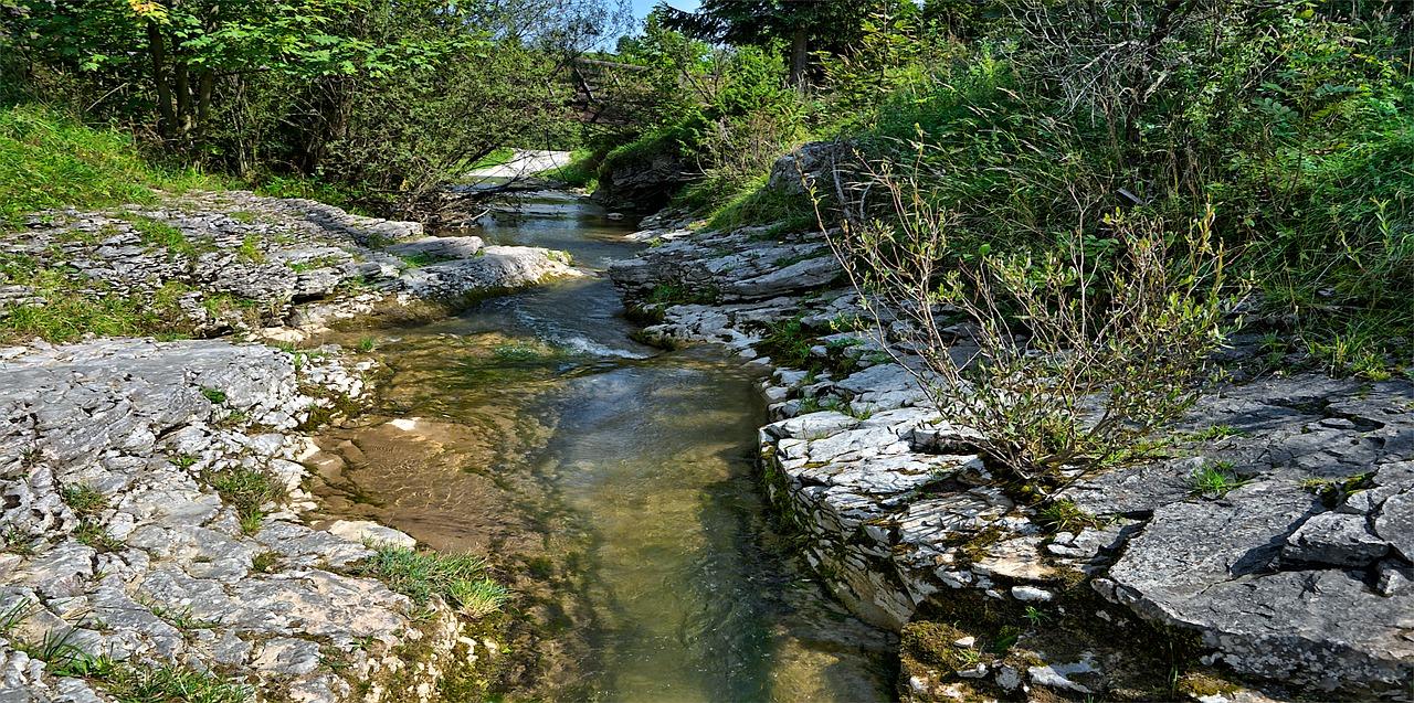 Nascente de rio