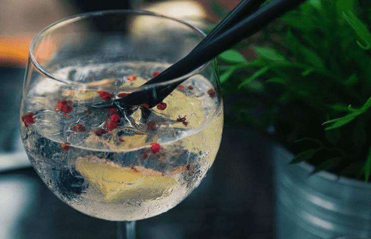 receitas de gin