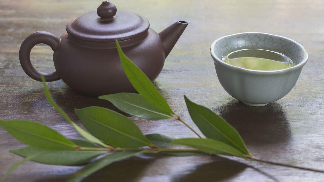 benefícios do chá de louro
