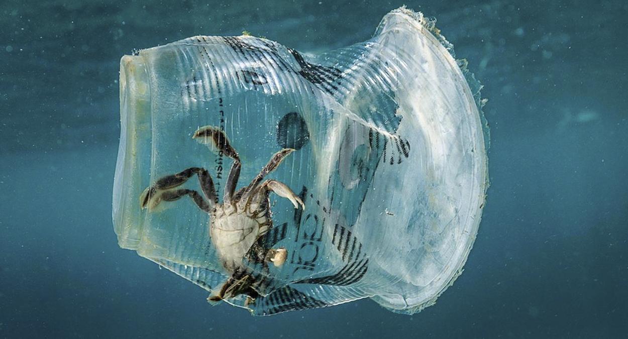 plastico nos oceanos deve triplicar até 2040