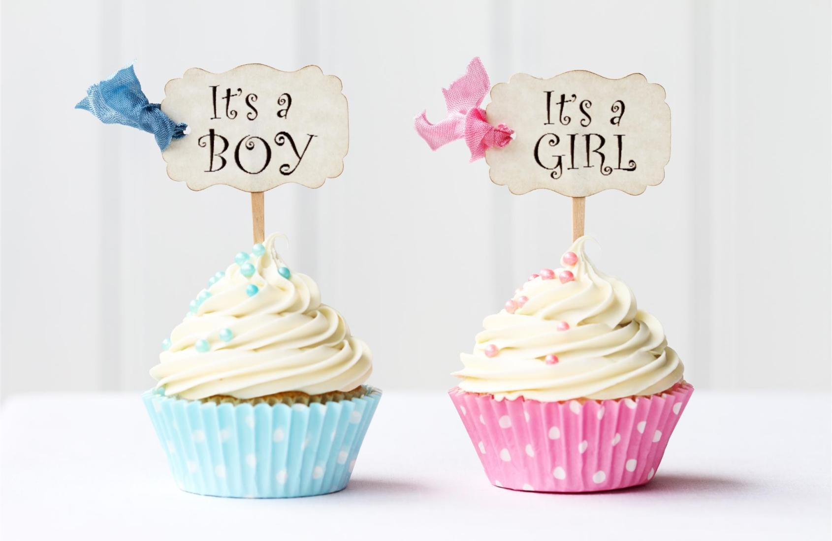 Dois cupcakes, um azul e outro rosa com as plaquinhas: menino ou menina?