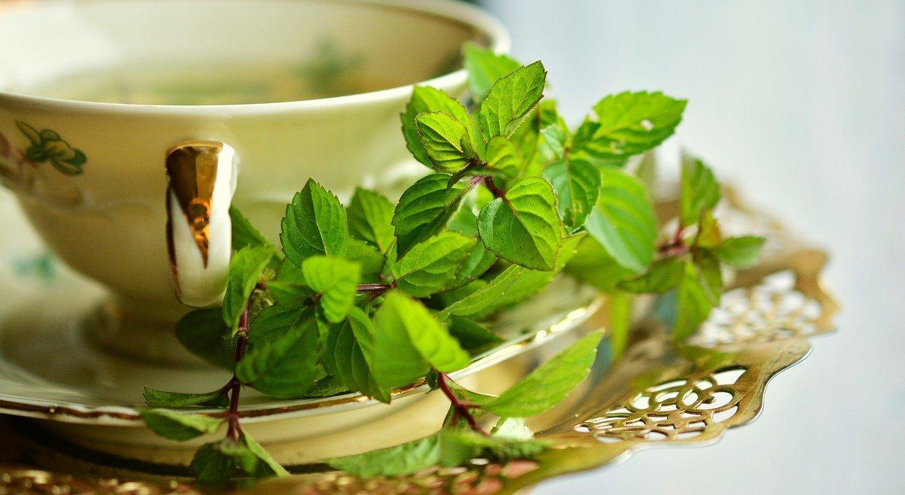 folhas de hortelã ao lado de uma xícara com chá
