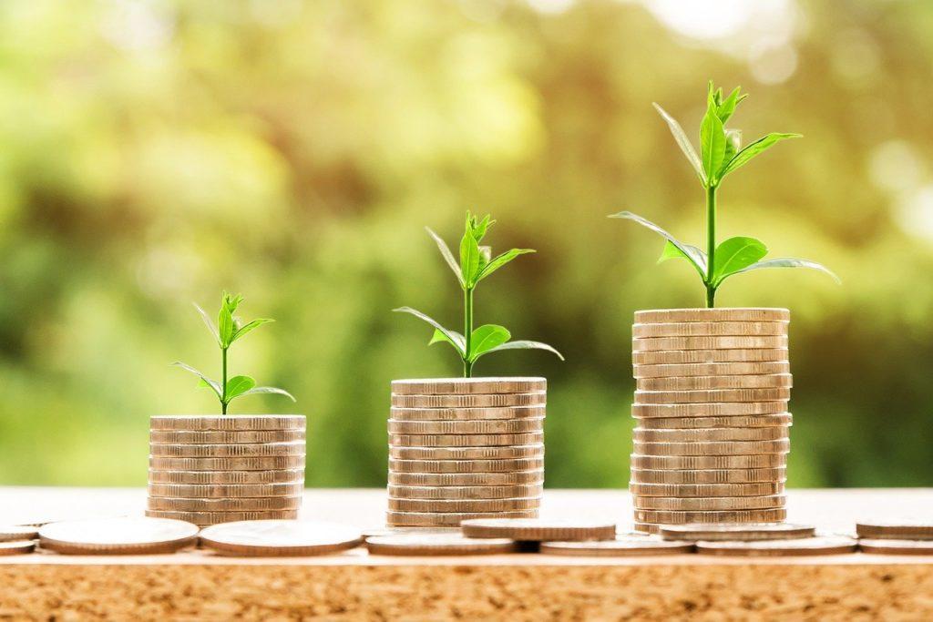 Foto mostra três pilhas de moedas com um ramo de planta em cima de cada uma.