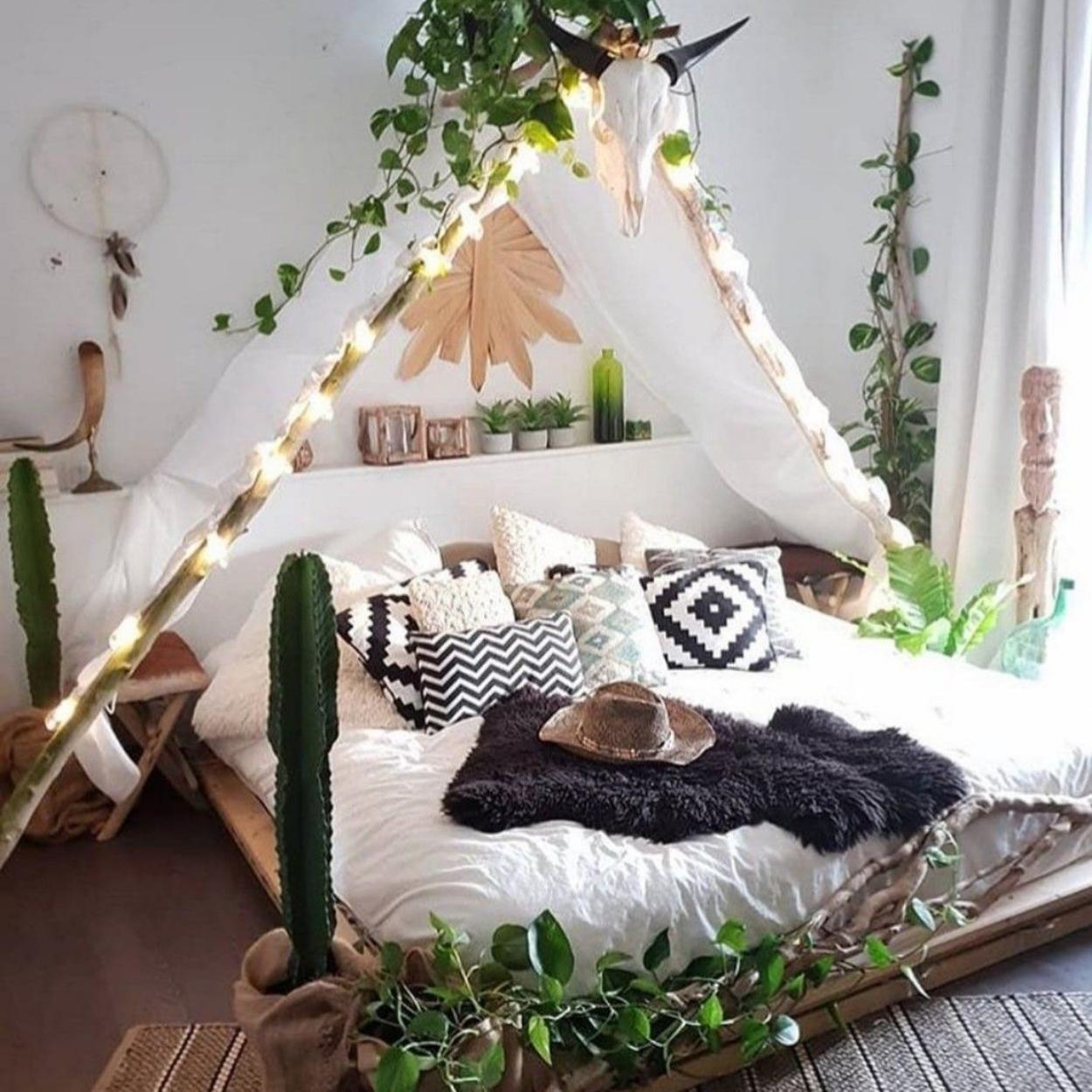 Opções de plantas para quarto ficar decorado.