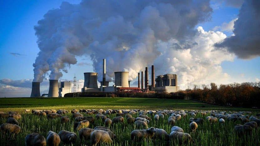 Foto mostra fumaça saindo de uma indústria ao lado de um pasto com animais.
