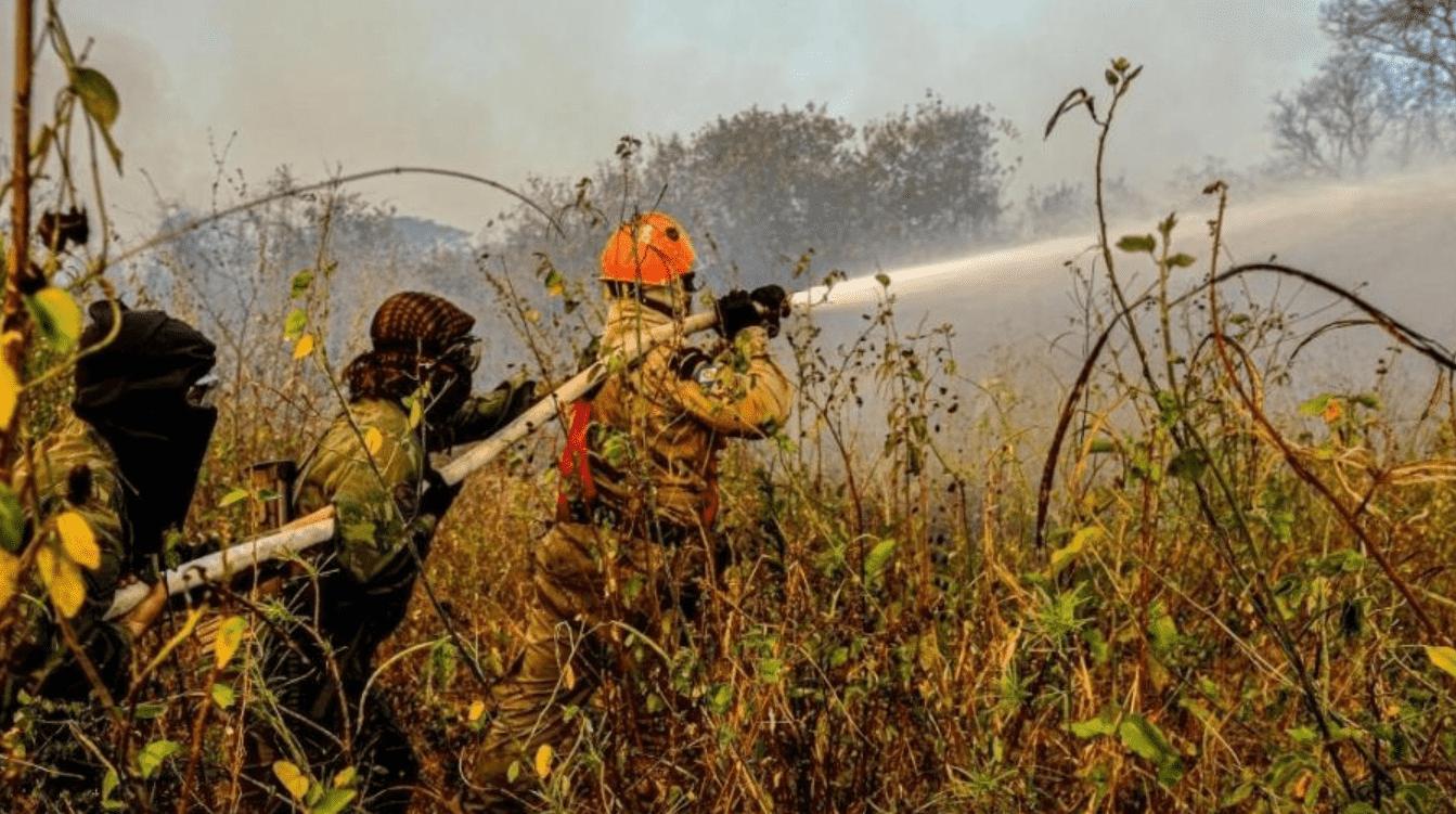 Foto mostra bombeiros apagando fogo em incêndios no Pantanal