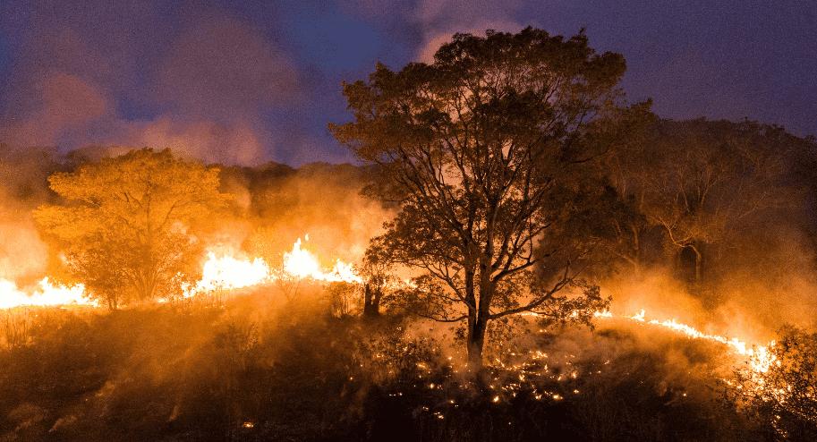 Imagem mostra o Pantanal em chamas