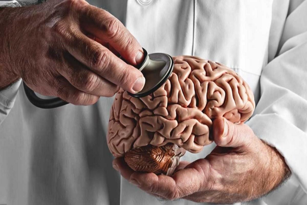 Ameba Comedora de Cérebro