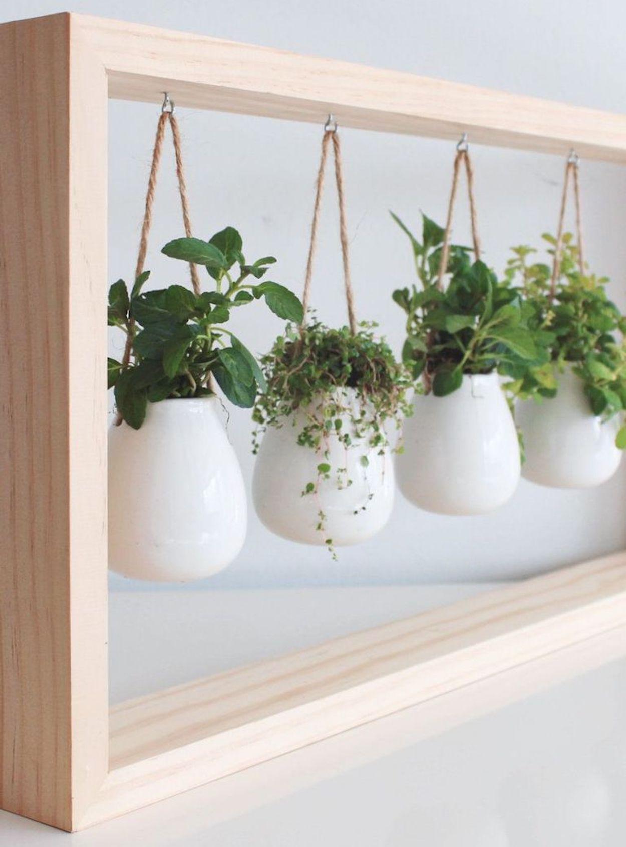um quadro de plantas