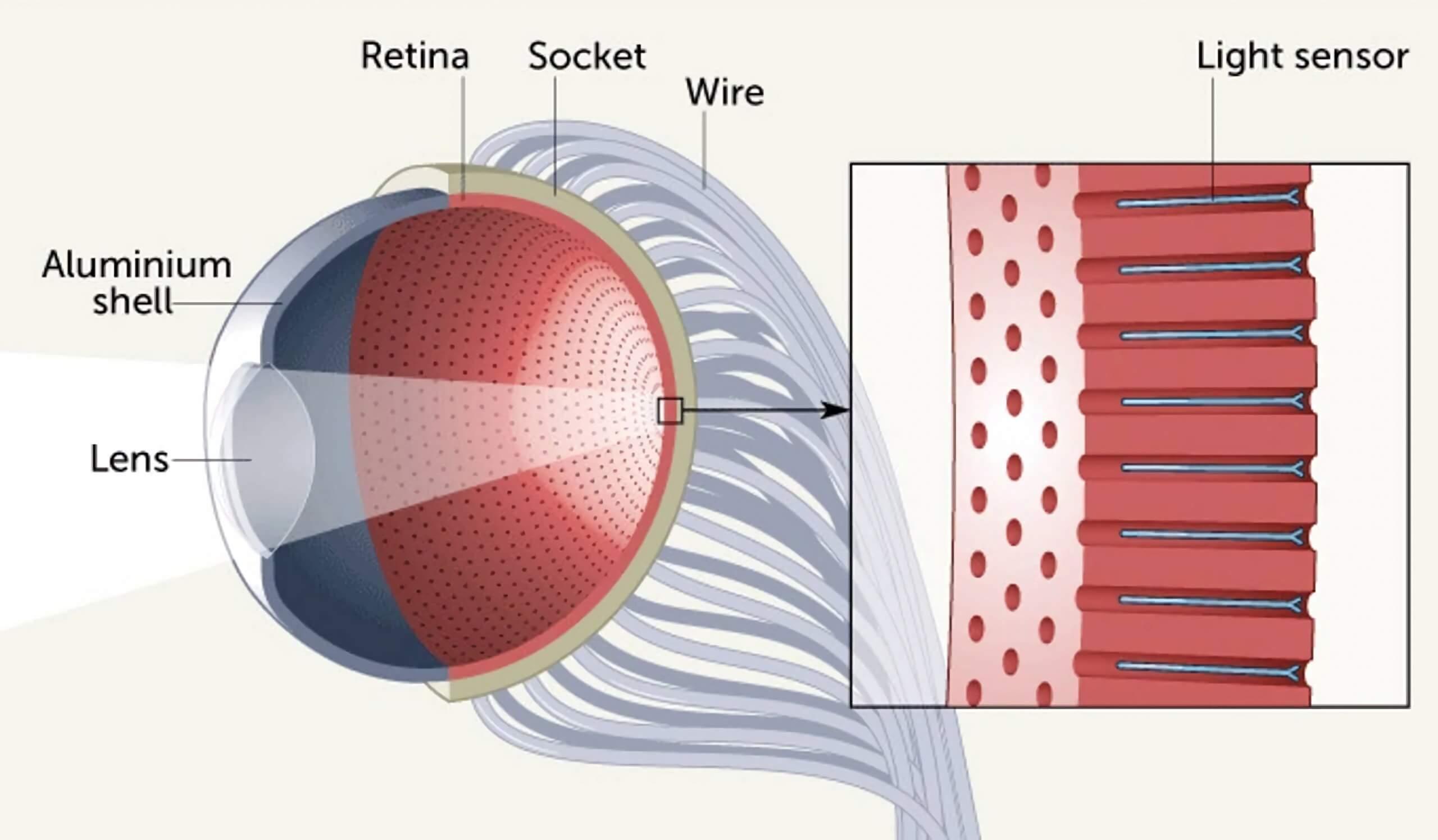 Pesquisadores de Hong Kong também desenvolveram um olho biônico