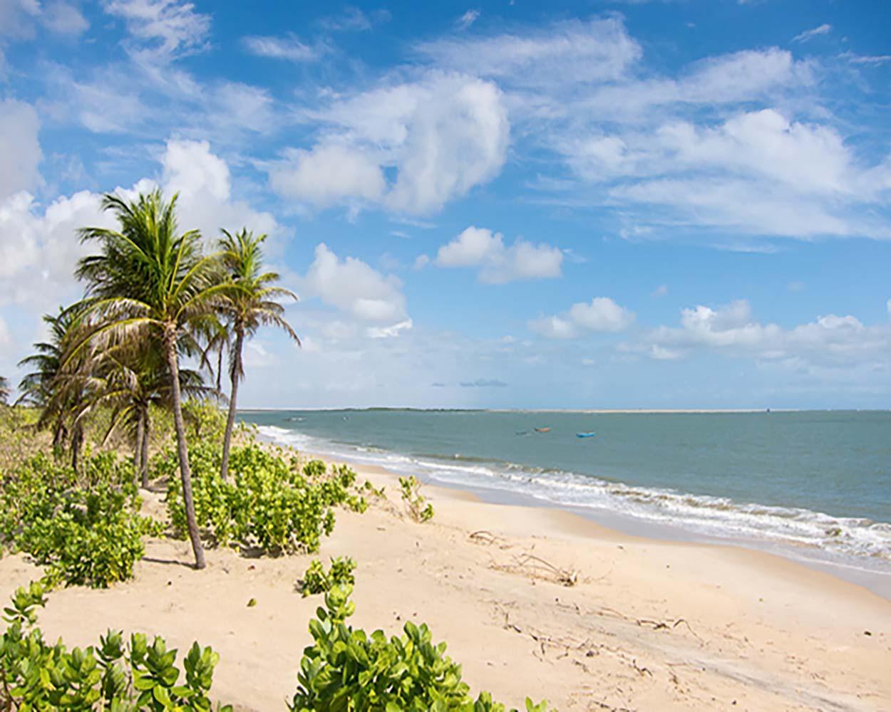 praia deserta no brasil lencóis maranhenses