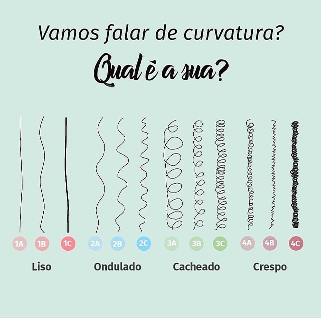 sistema de classificação de tipos de cabelo