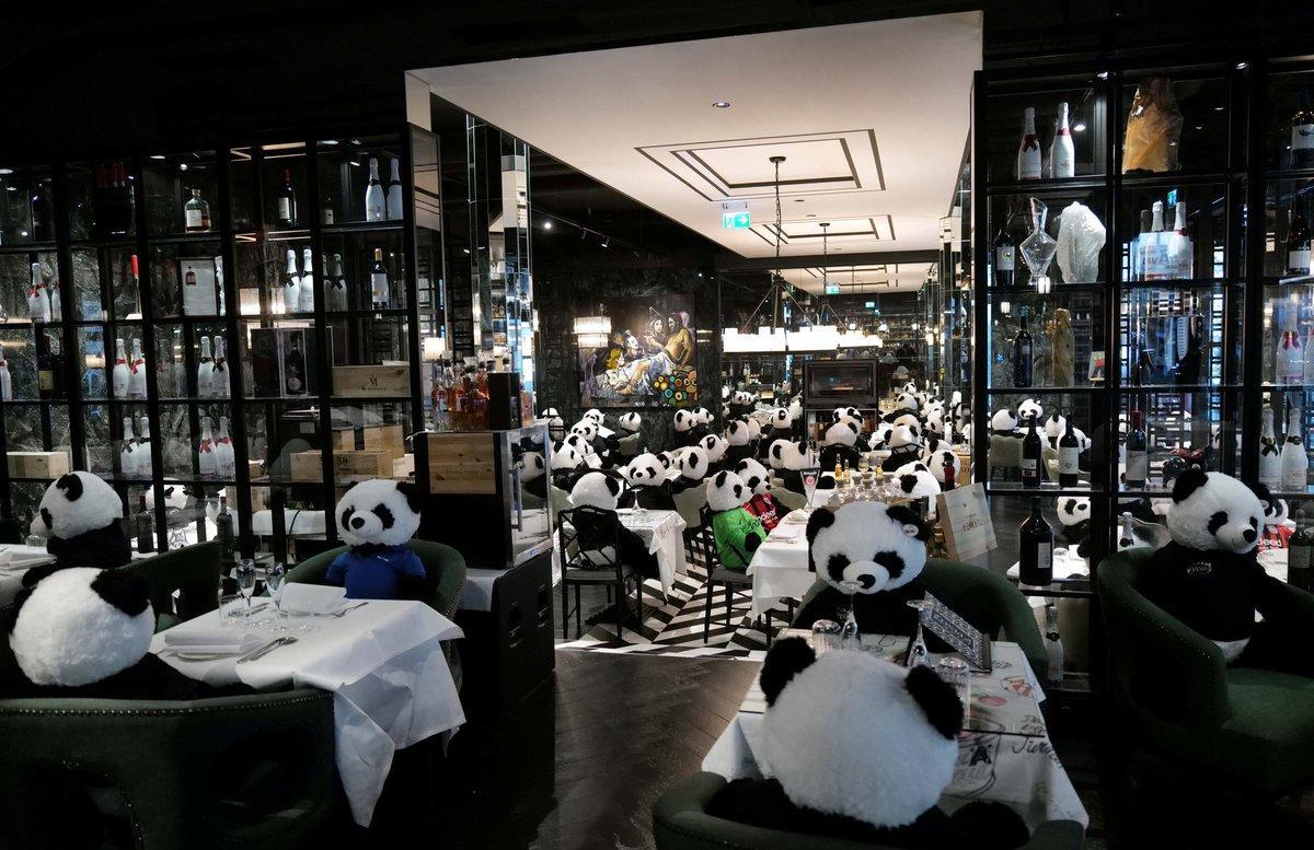 Bar na Alemanha coloca pandas