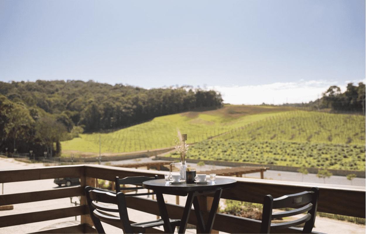 Imagem mostra vinícula do Roteiro do Vinho de São Roque