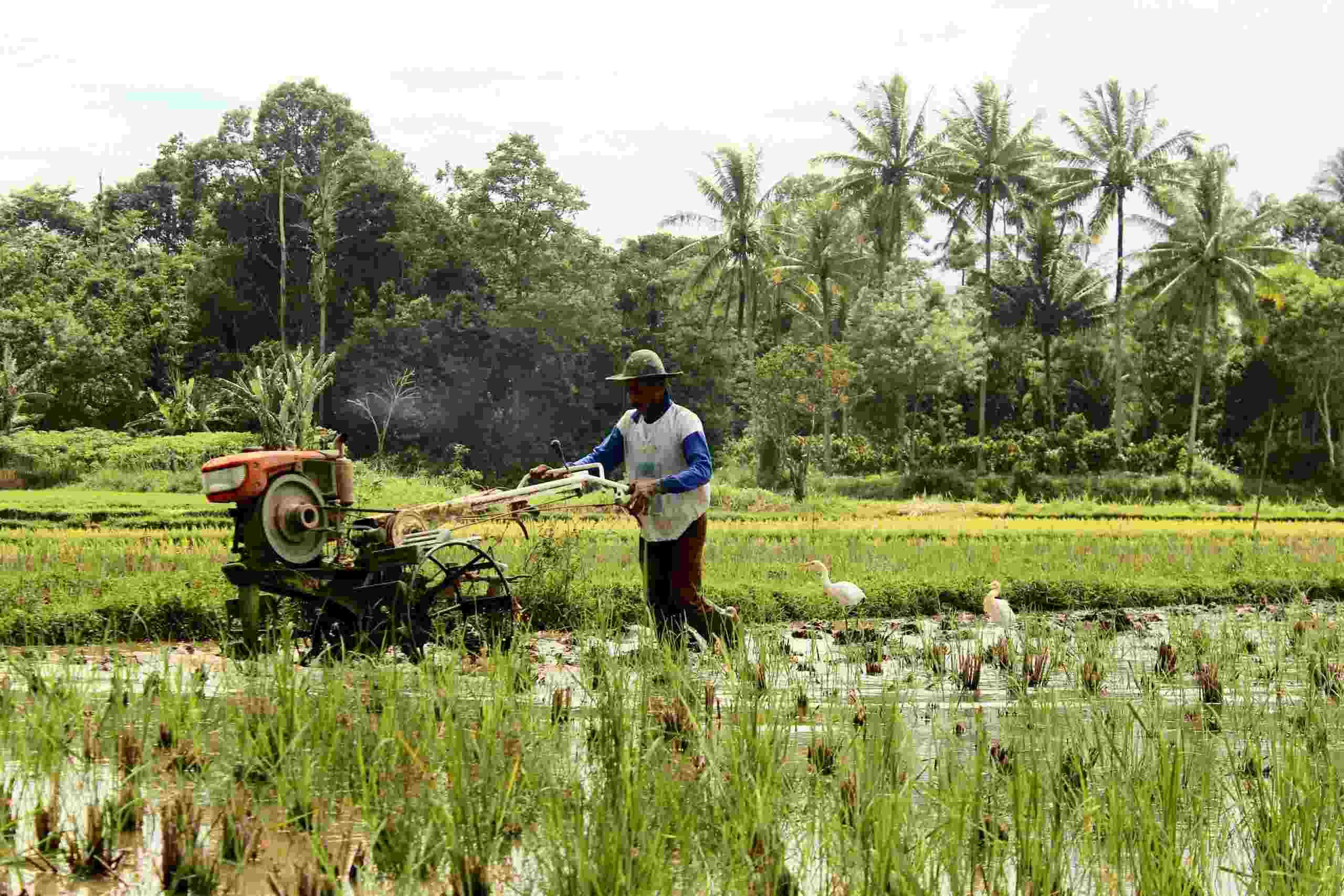 O que é crédito rural