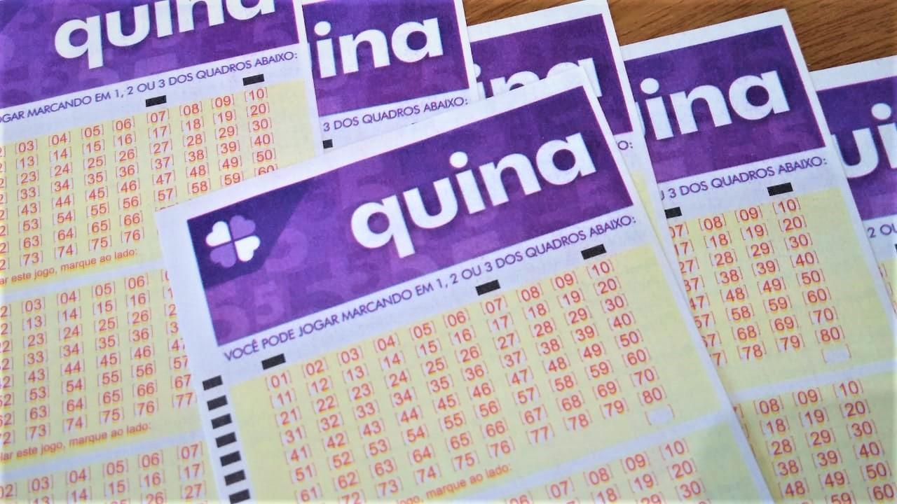 resultado da quina - a imagem contém diversos bilhetes da quina em branco