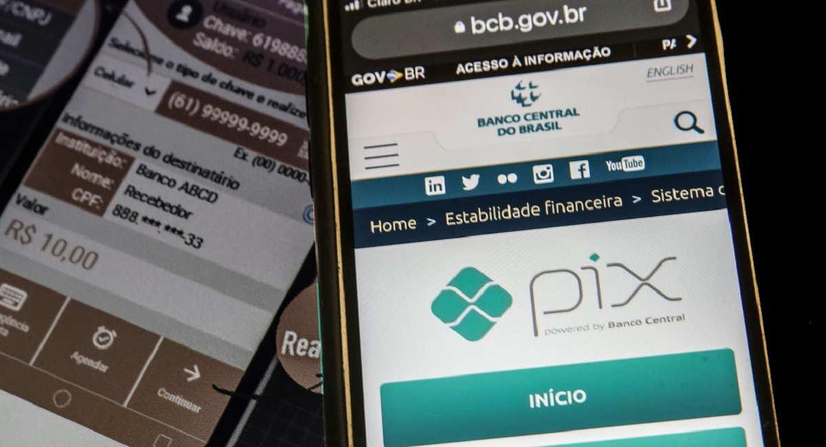 tela de acesso ao esocial e sistema de pagamentos PIX