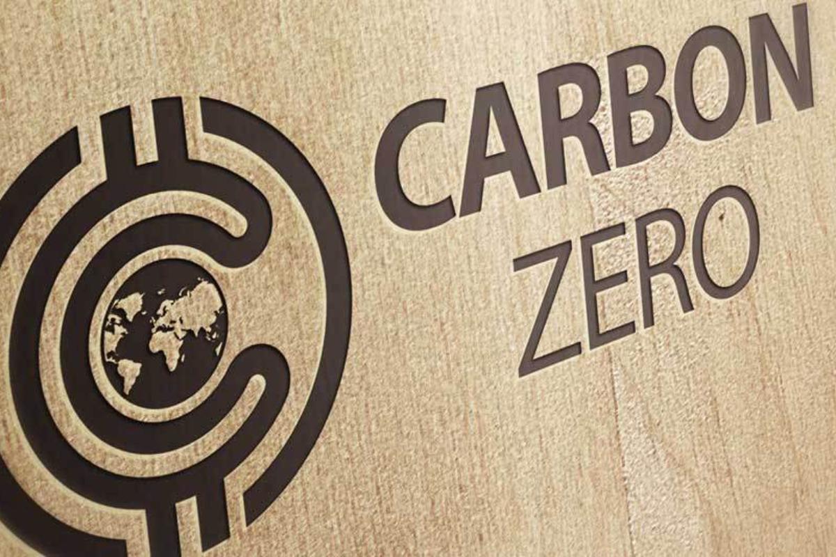 """Imagem mostra escrita """"Crédito de carbono"""" em uma madeira"""