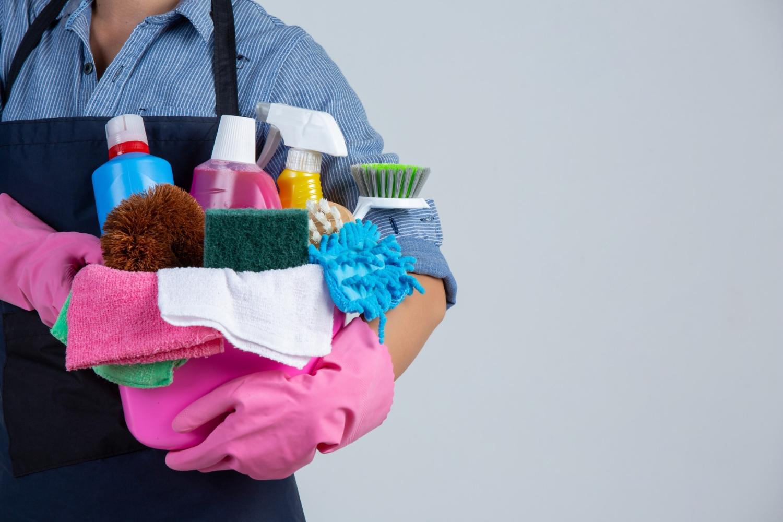 Imagem sobre empregada doméstica tem direito ao PIS