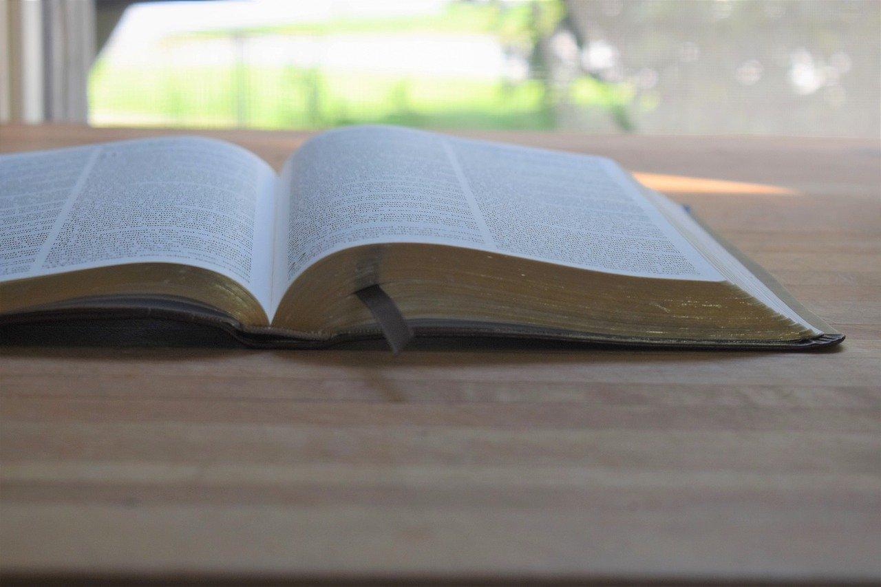 Versículo do dia explicado