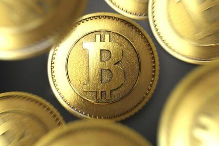 bitcoin bloomberg btc meerut